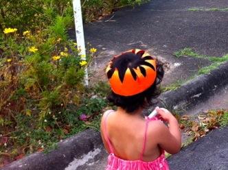 The Orange Princess
