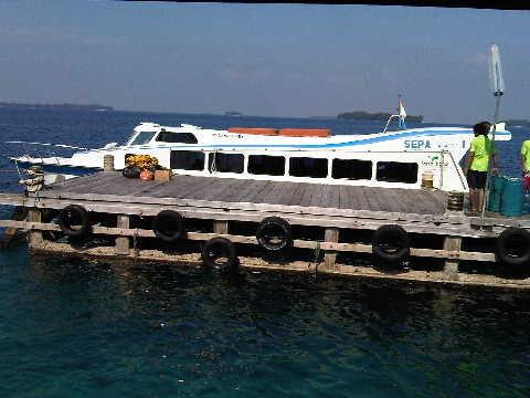 Speedboat yang membawa kami ke Pulau Sepa