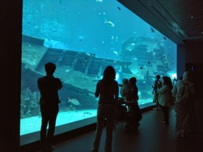 Ada akuarium besar yang menyambut kami masuk
