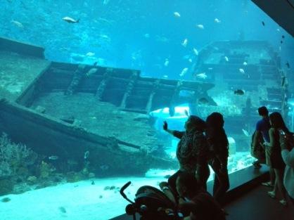 Akuarium ini untuk menunjukkan habitat 'bangkai kapal' alias Ship Wreck